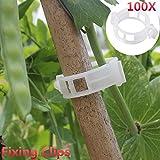 Kicode 100 Pz impianto Supporto Giardino Clips per Vite VegetablesTomato Traliccio Clips Vite a Crescere Verticale e Marche Piante più Sano
