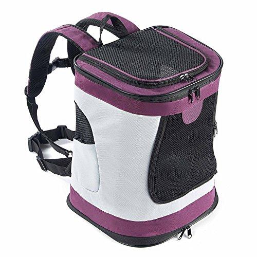 Petcomer Faltbarer, Weicher Rucksack für Katzen Hund mit Verstellbarer, Gepolsterter Schulter Mesh-Top-Öffnung Hundetragetasche bis 10 kg