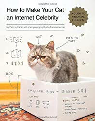 How to Make Your Cat an Internet Celebrity: A Guide to Financial Freedom.