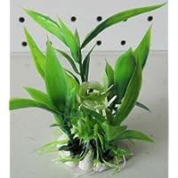 Planta Piantina de plástico atossica 6 cm decoro Acuario Terrario