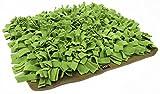 Doggytools by Knauder's Best Schnüffelrasen 60cm x 60 cm Hunde Intelligenzspielzeug hochwertig und handgemacht Hundespielzeug  Beschäftigung Anti-Schling Training Schnüffelteppich Leckerlisuche