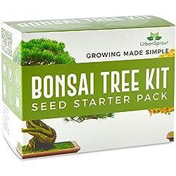 Urban sprout - Kit arbre Bonsaï - Cultiver vos propres arbres de Bonsaï à partir des graines - Kit cadeau de jardinage - 5 variétés de semences Bonsaï - Démarreur de germination