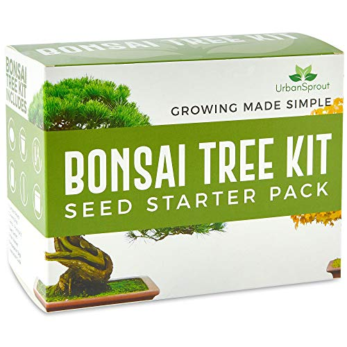Urban Sprout Bonsai Baum Anzuchtset - Züchten Sie Ihren eigenen Bonsaibaum mit Hilfe von Samen - Garten Geschenkset - 5 Arten von Bonsai-Bäumen - Starter-Samen-Set mit Bonsai Werkzeug Set