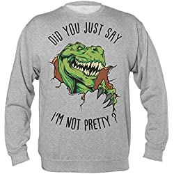Did You Just Say I'm Not Pretty Angry Green Dinosaur Sudadera Unisex Sweatshirt Small