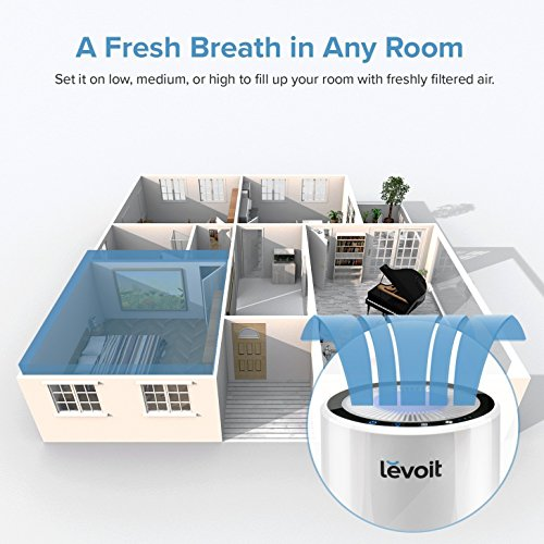 LEVOIT Air Purifier for Home, Quiet H13 HEPA Filter Removes 99.97% of Pollen, Allergy Particles, Dust, Smoke, Portable…