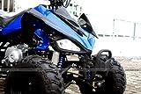 ATV Quad Carbon 125ccm Pocket Bike - 5