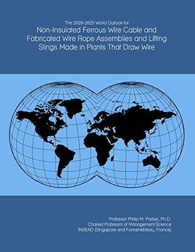 Sling Assembly (The 2020-2025 World Outlook for Non-Insulated Ferrous Wire Cable and Fabricated Wire Rope Assemblies and Lifting Slings Made in Plants That Draw Wire)