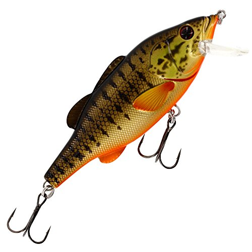 Westin Barry the Bass Floating 10cm 22g - Wobbler zum Spinnfischen auf Hecht, Zander & Barsch, Crankbait, Barschköder, Hechtköder, Farbe:Smallmouth Bass