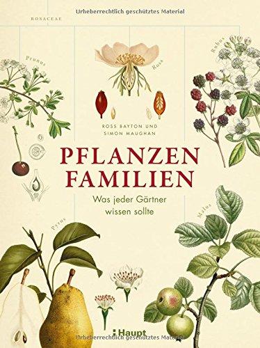 pflanzenfamilien von ross bayton und simon maughan - Einkeimblattrige Pflanzen Beispiele