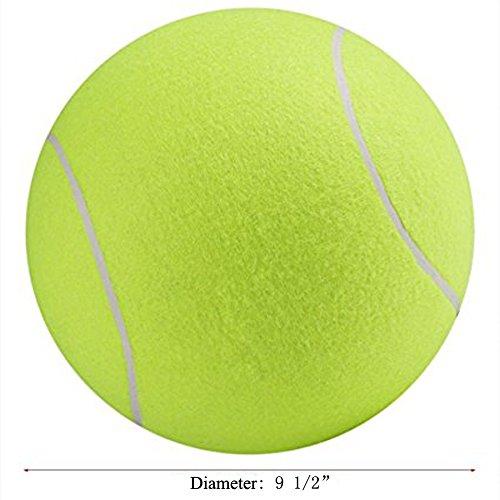 Unbekannt Pink Paws Pet Tennis Ball, PET Bite Spielzeug Signature Ball GIANT Training Bewegung Pet Ball aufblasbar 91/2mit Mini Kompressor