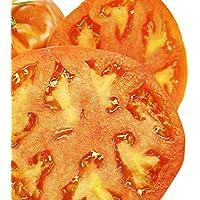 GEOPONICS 1 oz: Tomate JARDIN- Hamson (DX-52-12) - NON-GMO, herencia, jardinería VEGABLE