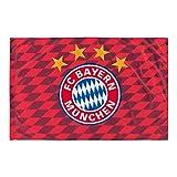 FC Bayern Fahne Flagge/ Hissfahne 100 x 150 cm