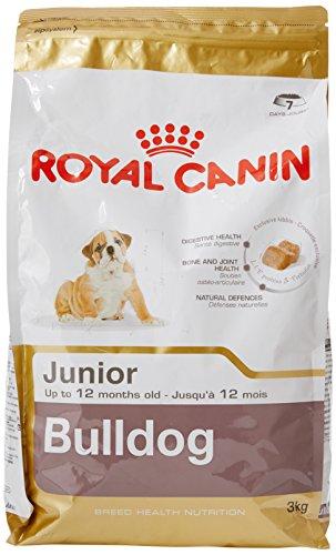 Royal Canin Bulldog Junior 3 kg, 1er Pack (1 x 3 kg) Preisvergleich