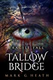 The Fragile Fall At Tallow Bridge (The White Blood Chronicles Book 1) (English Edition)