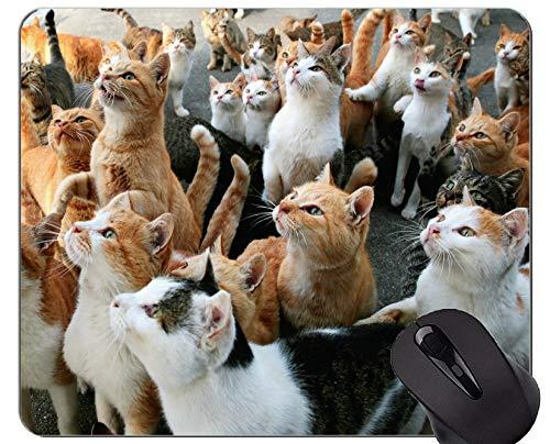 Mauspad mit genähtem Rand, japanische Katze Aoshima Home Office Computerzubehör Mousepads