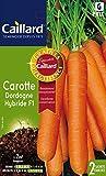 Caillard PFCC10732 Graines de Carotte Dordogne Hybride F1