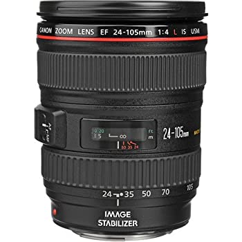 Canon EF 24-105mm f/4.0 L IS USM - Objetivo para Canon (distancia focal 24-105mm, estabilizador) color negro