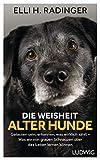 Die Weisheit alter Hunde: Gelassen sein, erkennen, was wirklich zählt - Was wir von grauen Schnauzen über das Leben lernen können