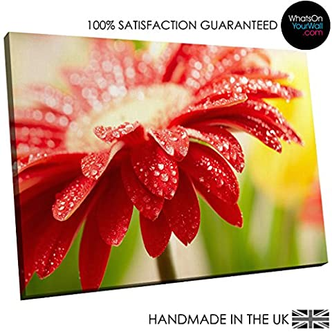 Small Framed Canvas Print - Modern Wall Art - HD Quality Picture - 100% Guaranteed - Red Floral Water Drops - Living & Bedroom Home Décor with Easy Hang Guide - AB128 40cm x 30cm -