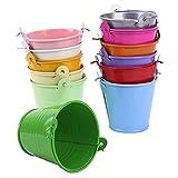Kentop Lot de 12 mini seaux en métal - Petits pots de fleurs suspendus - Pour pots de fleurs à suspendre - Pour balcon, jardi