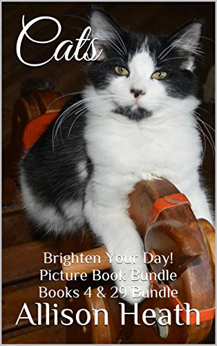 cats-2-in-1-picture-book-bundle-books-4-29-brighten-your-day-series-bundle-english-edition