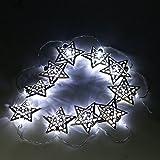 Trixes Lichterkette mit 10 zauberhaften silbernen Weihnachts Sternen Indoor LED-Leuchten
