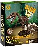 Geoworld 23210292 - Velociraptor Ausgrabungsset circa 27 cm