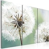 murando - Cuadro en Lienzo - Impresion en calidad fotografica - Cuadro en lienzo tejido-no tejido - flores 030210-16