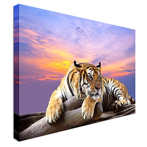 Tiger At Sunset Time   Canvas Art Cheap Wall Print Home Interior 12x16  Inches | Canvas Art Cheap Wall Print   High Quality, Classic Style Canvas  Prints, ...