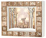 Brubaker - Calendrier de l'Avent Lumineux - 24 Tiroirs à remplir - Forêt/Cadre en Bois - Décoration de Noël - Éclairage LED - 35,5 x 6 x 27 cm - Blanc/Bois Naturel