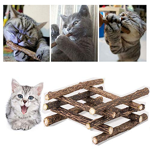 Pawaca Catnip Sticks