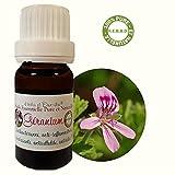 Huile Essentielle HEBBD de GÉRANIUM d'Egypte (Pelargonium rosae) (10ml)