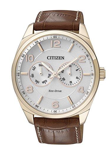 Citizen metropolitan eco drive ao9024-16a - orologio da polso uomo