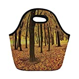 Jieaiuoo Portable Lunch Bag,Landscape,Golden Fallen Leaves Covered Ground Autumn Forest Nature Picture,Amber Brown And Yellow,for Kids Adult Thermal Insulated Tote Bags