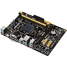 ASUS AM1M-A Placa base (DDR3, S-ATA 600, Micro ATX, PCI Express 2.0 x16, HDMI, VGA, DVI-D, USB 3.0, UEFI BIOS, Socket AM1)