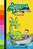 Un dragon à la maison, Tome 04 - L'île mystérieuse
