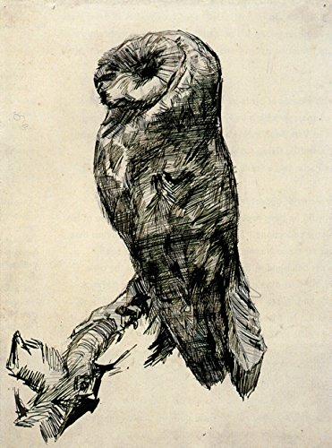 Spiffing Prints Vincent Van Gogh - Barn Owl Viewed from The Side, 1887 - Extra Large - Semi Gloss - Brown Frame - Owl Giclée Print