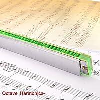 Ottava Pligh (TM)-Armonica a 24 fori di organi con Reed-Strumento con custodia, musica, strumento per la vendita al minuto - 24 Gauge Instrument Cable