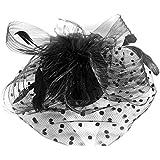 Vococal Mini Sombrero de Copa con Pluma de Malla Velo Fascinator Neto / Cubierta del Sombrero de Cóctel para Mujer Tocado de Clip de Pelo de Cara para Fiesta Cosplay,Negro