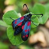 Artland Qualitätsbilder I Poster Kunstdruck Bilder 70 x 70 cm Tiere Insekten Käfer Foto Grün B5ES Falter Käfer