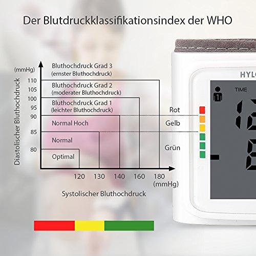 Blutdruckmessgerät Handgelenk Hylogy Vollautomatische professionelle Blutdruk-und Pulsmessung 2*120 Speicherplätze, LCD großem Display und Tagbare Aufbewahrungsbox - 5