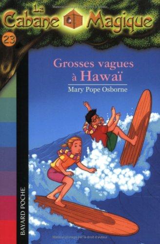 """<a href=""""/node/92785"""">Grosses vagues à Hawaï</a>"""