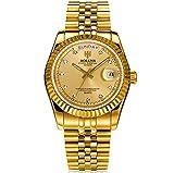 HOLUNS Herren Quarzuhr Edelstahl Full Gold Luxus Diamant Uhren Wasserdicht mit Kalender