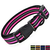 Mile High Life Night Reflektierende Doppelstreifen Nylon Hundehalsband (Helles Rosa, X-Small Neck 9