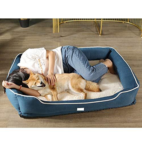 Orthopädisches Hundebett, Memory Foam Hundekissen mit Abnehmbarem Waschbar Bezug Hundesofa Hundebetten für Mittelgroße und Große Hunde, Katzen,Blau,L
