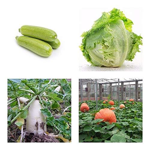Portal Cool 30 baum-Samen: Mix Gemüse n n Samen Wählen Sie Ihre Lieblingmen High Quality Seed