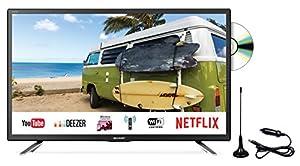SHARP LC-24DFG6132EM 60,96 cm (24 Zoll) Full-HD Smart Fernseher (Triple Tuner DVB-T/T2HD, DVB-S/S2, DVB-C, HEVC H.265)