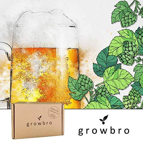 growbro | Hopfen Anzuchtset | Der Weg zu deinem eigenen Bier | Geschenk für Männer, Freunde & Papa, Geburtstagsgeschenk, Gastgeschenk, Geschenke zum Grillen, Männer Gadget