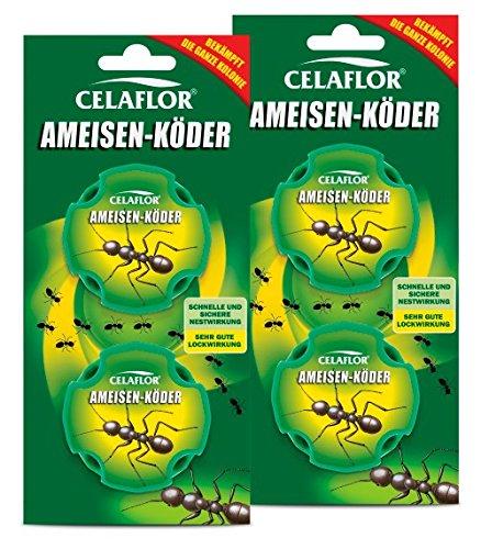 Celaflor Ameisen-Köder 4 Dosen Vorteilspack (2× 2 Dosen)