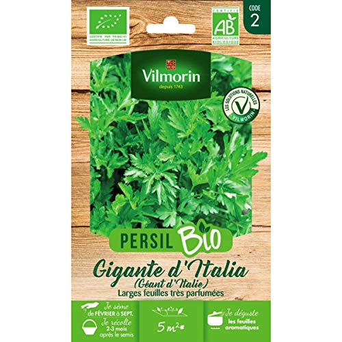 Vilmorin Sachet graines Persil Géant d'Italie Bio - Petroselinum sativum